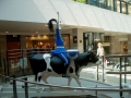 Cowparade-3