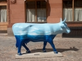 Cowparade-57